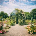 """Rose Garden Pergola"" by JessicaJenney"