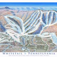 Whitetail Pennsylvania Art Prints & Posters by James Niehues