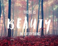 There is Beauty in Everything Wall Art
