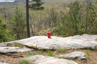 Red Solo Cup!