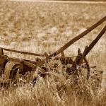 """Antique Plow Abandoned in a Field"" by rhamm"
