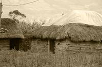 Adobe Building With Thatched Roof