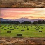 """County Barn Wood Window View"" by lightningman"