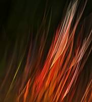 FLAME GRASS ABSTRACT
