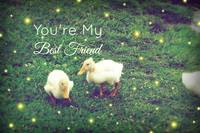 You're My Best Friend