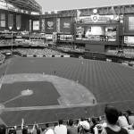 """Chase Field 2015 BW"" by CHApperson"