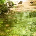 """""""The Pocket stream"""" by gilbertsphotographyprints"""
