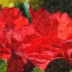 """Red Begonias"" by sharonpattersonsart"