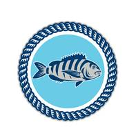Sheepshead Fish Rope Circle Retro