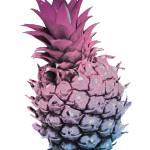 """Pink Purple and Blue Pineapple"" by ValeriesGallery"