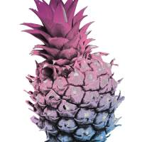 Pink Purple and Blue Pineapple Art Prints & Posters by Valerie Waters