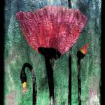 """""""24a Abstract Floral Painting Digital Expressionism"""" by Ricardos"""