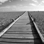 """Dungeness boardwalk"" by DavidFowler"