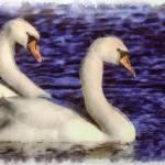 """""""Water Color Birds 1"""" by GregB"""