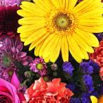 """""""Delicate Summer Bouquet"""" by SplitWindow"""