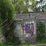 """Overgrown Dilapidated Building"" by rhamm"