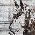 """Napoleon Horse"" by Aneri"