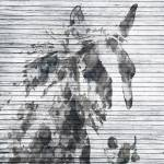 """Sabino Horse"" by Aneri"