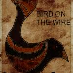 """BIRD ON THE WIRE"" by jasedam"