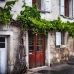 """Winery Building Exterior with Old Grapevine, Lavau"" by George_Oze"