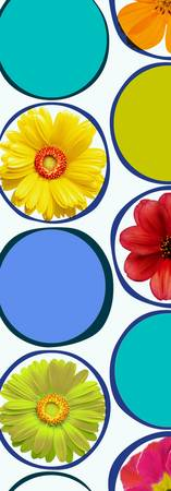 ORL-2121-1 Circle patern with flowers 30X86 2