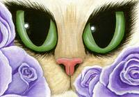 Lavender Roses - Green Eyed Cat Purple Roses