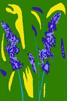 Blue Salvia 01 2004 - Del Calsione Co. Image
