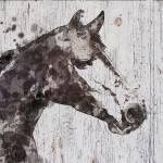 """Skylar horse"" by Aneri"