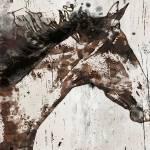 """Galaxy Horse"" by Aneri"