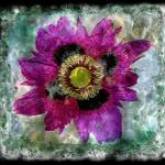 """27a Abstract Floral Painting Digital Expressionism"" by Ricardos"