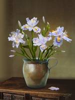 Irises in Copper Pitcher