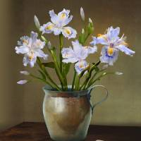 Irises in Copper Pitcher by I.M. Spadecaller