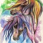 """""""rainbow horses"""" by tarantella"""