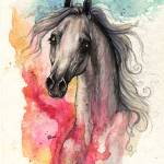 """arabian horse with rainbow background"" by tarantella"