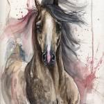 """arabian horse portrait"" by tarantella"