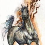 """""""spooked arabian horse"""" by tarantella"""