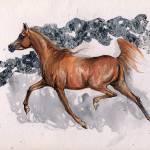 """chestnut arabian mare"" by tarantella"