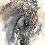 """andalusian horse"" by tarantella"