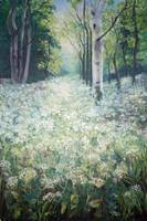 Cow parsley Spring
