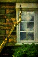 Heathcliff's Window