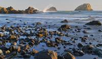 Sunset on False Klamath Cove's rocky shore