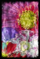 29a Abstract Floral Painting Digital Expressionism