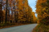 Sugar Loaf Road Fall Foliage-IMG_53242015