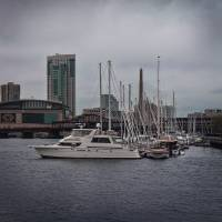 In Boston Harbor Art Prints & Posters by Louise Reeves