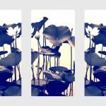 """Lotus Triptych"" by JessicaJenney"