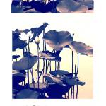 """""""Dance of the Lotus Triptych"""" by JessicaJenney"""
