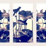 """""""Lotus Triptych II"""" by JessicaJenney"""
