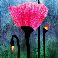 """32a Expressive Floral Poppies Painting Digital Art"" by Ricardos"