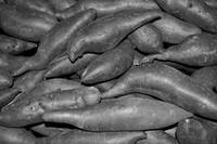 A bin of Yams in black and white