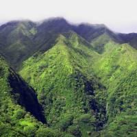 Ko'olau Mountains, Oahu, Hawaii Art Prints & Posters by Joel Carlson
